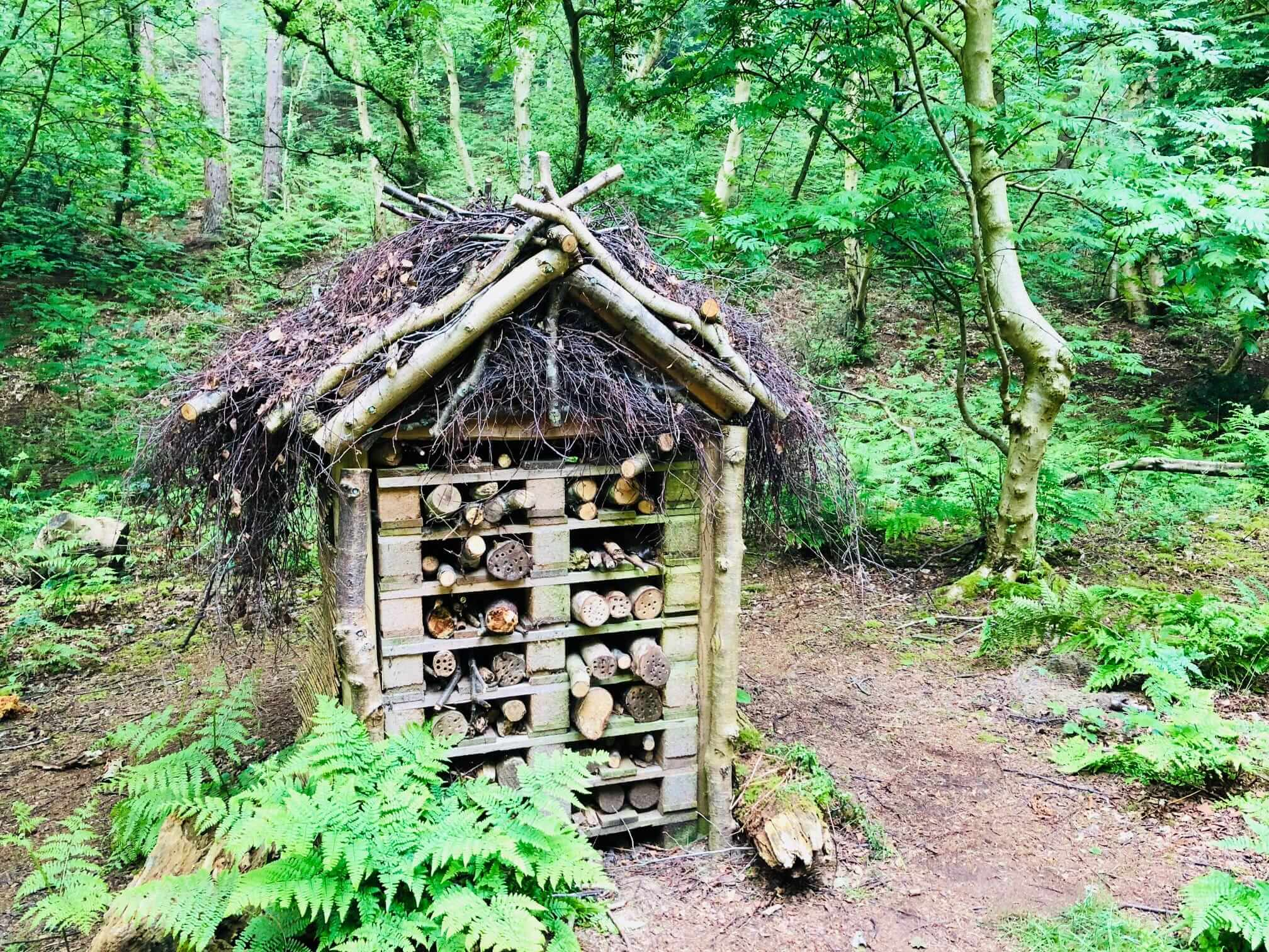 Bug hotel - natural surrounds are like Centre Parcs
