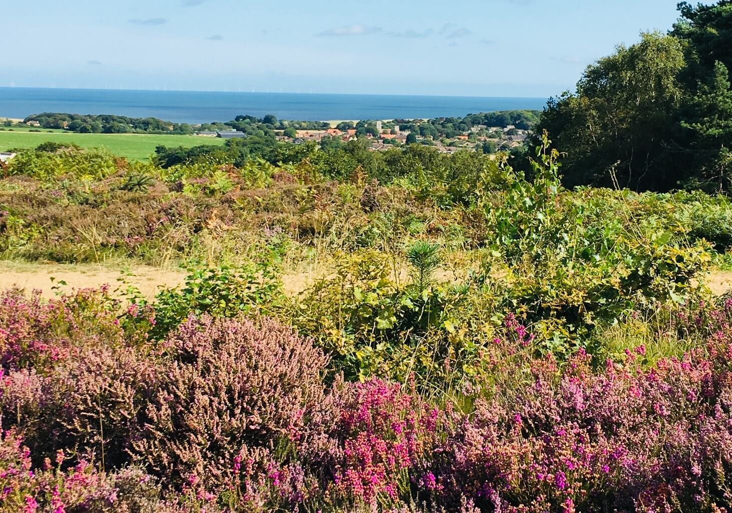 The view from Kelling Heath out to sea - a great alternative to Centre Parcs for natural surrounds and lodge holidays